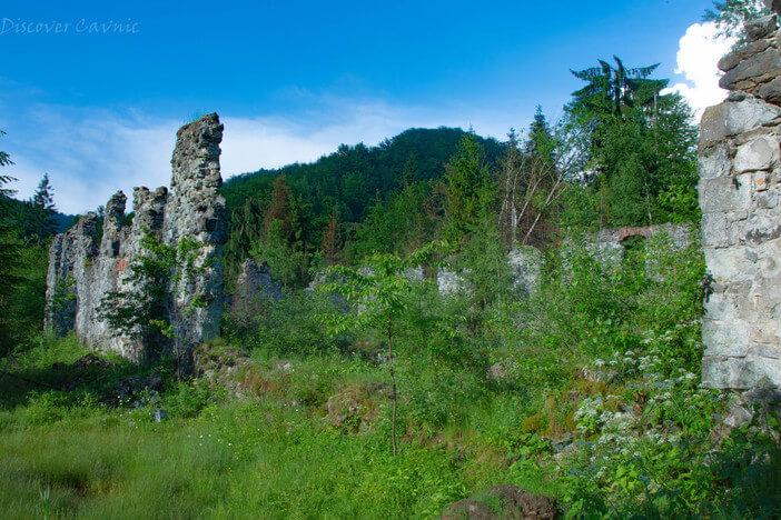 Ruinele Topitoriei Logolda Cavnic